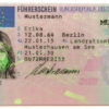 EU Drivers Licenses