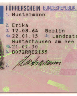 European driving licence