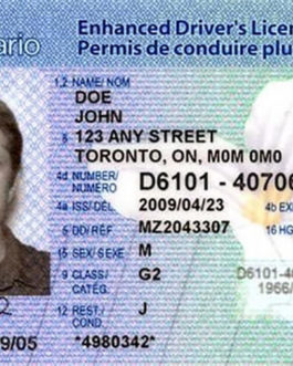 Canadian Drivers license