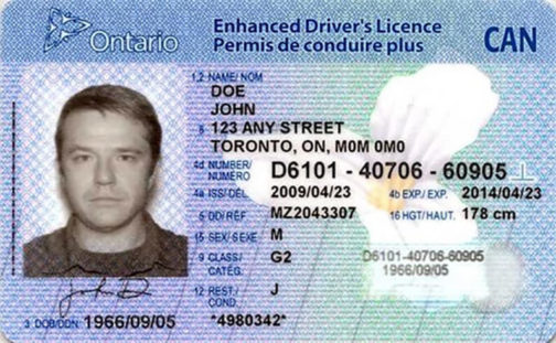 Canadian Driver's license