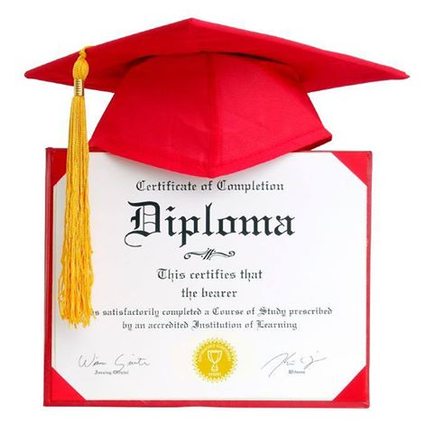 Professional Diploma